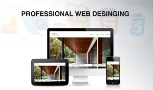 Hire Professional Web Design Company in India