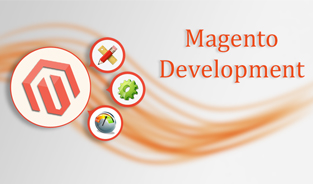 Services Offered by the Magento development Companies