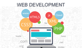 Why We Need a Web Development Company for an Online Business