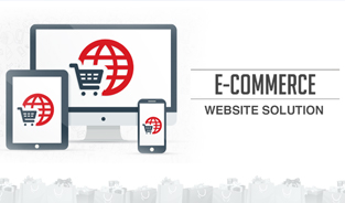 Custom Ecommerce Website Solution Providers in India