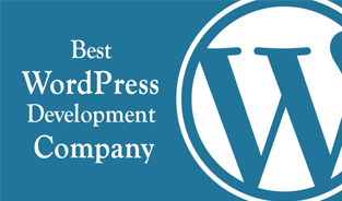 How to Find Best WordPress Development Company?