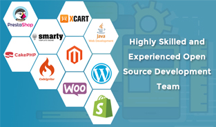 Highly Skilled and Experienced Open Source Development Team
